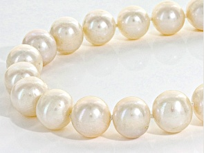 "11-12mm white cultured freshwater pearl, round, sterling silver necklace. Measures approximately 1/2""in width and has a spring ring clasp. Color, shape and size varies. Estimated Appraisal Value $275.00"